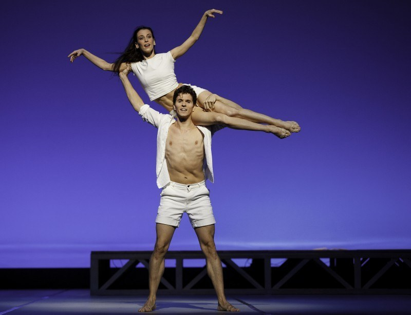 The Seagull – A Modern Ballet Masterpiece by John Neumeier